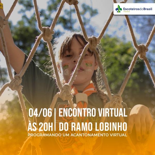 Encontro virtual - Ramo Lobinho