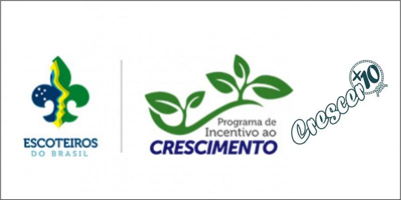 Programas de Incentivo ao Crescimento